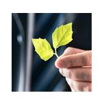 Nachhaltige Drucksachen bestellen